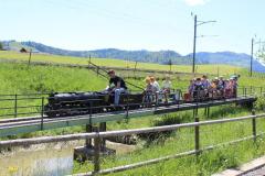 Die 24m lange Brücke führt über den Teich und weist ein Gefälle von 30 Promille aus